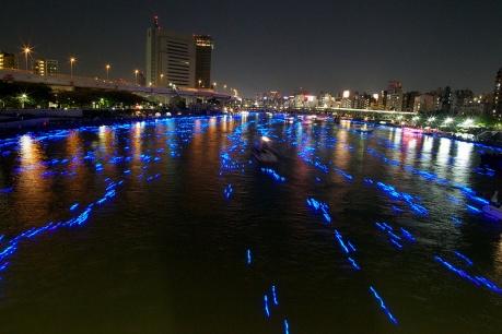 Festival Hotaru 2012(8)